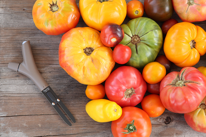Parrot_FlowerPower_Tomatoes